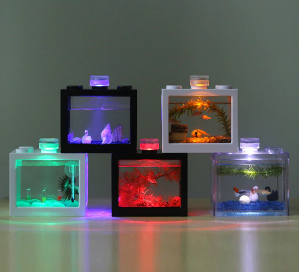 Aquarium Essentials You Need To Have In Your Home