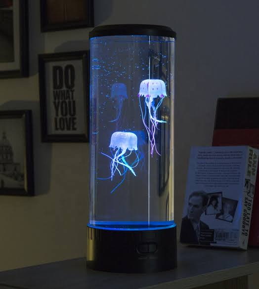 Jellyfish Tank -  Make A Pleasant Place For Them